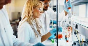 Grupo de estudantes da química que trabalham no laboratório foto de stock royalty free