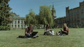 Grupo de estudantes universitário que estudam no gramado do terreno video estoque