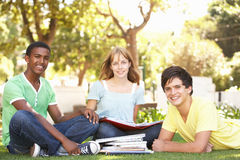 Grupo de estudiantes adolescentes que charlan en parque Foto de archivo libre de regalías