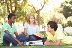 Grupo de estudiantes adolescentes que charlan en parque Imagenes de archivo