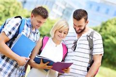 Grupo de estudiantes que aprenden en el parque Imagen de archivo libre de regalías