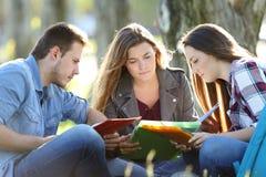 Grupo de estudiantes que estudian en un parque Imagenes de archivo