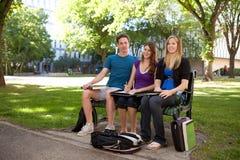 Grupo de estudo do estudante Imagens de Stock