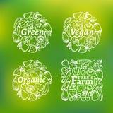 Grupo de etiqueta orgânico Fotografia de Stock
