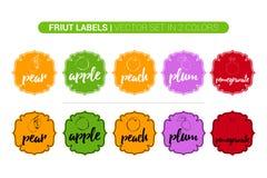 Grupo de etiquetas colorido do fruto de pera, Apple, pêssego, ameixa, romã Etiquetas do negócio de propaganda dos desenhos animad ilustração royalty free