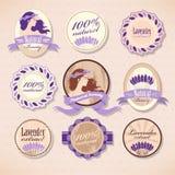 Grupo de etiquetas da beleza Foto de Stock Royalty Free
