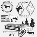Grupo de etiquetas da carne, de crachás e de elementos superiores do projeto Vetor Imagens de Stock Royalty Free