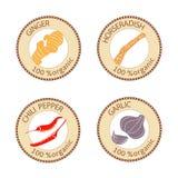 Grupo de etiquetas das especiarias 100 orgânicos coleção Imagens de Stock