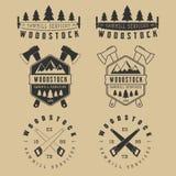 Grupo de etiquetas das serrações do vintage, de emblemas, de logotipo, de crachás e de elementos do projeto Fotografia de Stock