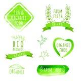 Grupo de etiquetas do alimento biológico da aquarela Produto de Eco Foto de Stock Royalty Free