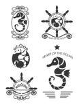 Grupo de etiquetas do cavalo marinho do vintage, de emblemas e de elementos do projeto Vetor Fotos de Stock Royalty Free