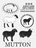 Grupo de etiquetas do cordeiro, de carne de carneiro, de crachás e de elementos superiores do projeto Vetor Fotos de Stock Royalty Free