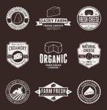 Grupo de etiquetas do queijo do vetor, de ícones e de elementos do projeto Foto de Stock