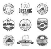 Grupo de etiquetas do queijo do vetor, de ícones e de elementos do projeto Imagem de Stock Royalty Free