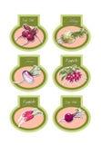 Grupo de etiquetas do vetor com vegetais Vetor Fotos de Stock
