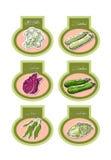 Grupo de etiquetas do vetor com vegetais Vetor Imagens de Stock Royalty Free
