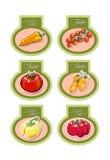 Grupo de etiquetas do vetor com vegetais Vetor Imagem de Stock