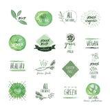 Grupo de etiquetas e de elementos tirados mão da aquarela do alimento biológico Imagem de Stock Royalty Free