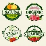 Grupo de etiquetas frescas & orgânicas Fotos de Stock Royalty Free