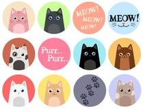 Grupo de 12 etiquetas gatos ilustração do vetor