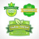 Grupo de etiquetas orgânico-bio-naturais Fotografia de Stock