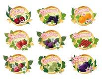 Grupo de etiquetas para o doce de fruta Foto de Stock
