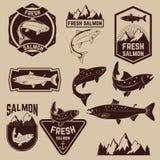 Grupo de etiquetas salmon fresco Imagens de Stock