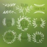 Grupo de etiquetas verde ilustração do vetor