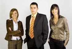 Grupo de executivos Fotos de Stock Royalty Free