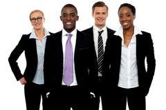 Grupo de executivos diferentes em uma linha imagem de stock royalty free