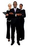 Grupo de executivos. Equipe do negócio fotografia de stock royalty free