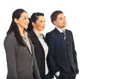 Grupo de executivos que olham ao futuro Fotografia de Stock Royalty Free