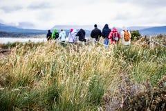 Grupo de exploradores que andam em Isla Martillo para visitar os pinguins, t fotos de stock royalty free