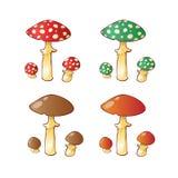 Grupo de família do cogumelo Imagem de Stock