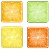 Grupo de fatias quadradas dos frutos dos ícones Imagem de Stock