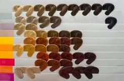 Grupo de fechamentos do cabelo Imagem de Stock Royalty Free