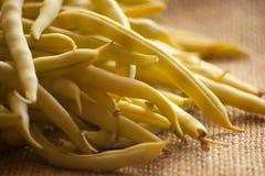 Grupo de feijões amarelos frescos Fotografia de Stock