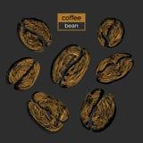 Grupo de feijões de café dourados diferentes no fundo preto Coleção do vetor esboço Imagem de Stock Royalty Free