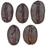 Grupo de feijões de café, isolado no fundo branco Imagens de Stock