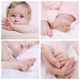 Grupo de fim acima da parte do corpo pequeno bonito do bebê Imagem de Stock