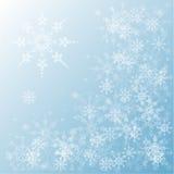 Grupo de flocos de neve Fotos de Stock