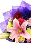 Grupo de flores Fotografia de Stock Royalty Free