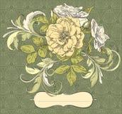Grupo de flores ilustração royalty free