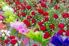 Grupo de flores Imagem de Stock Royalty Free