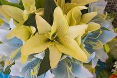Grupo de flores amarelo fotografia de stock