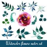 Grupo de flores bonitas da aquarela Fotografia de Stock Royalty Free