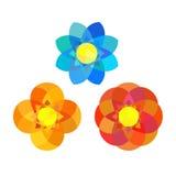 Grupo de flores da mandala da geometria Imagens de Stock Royalty Free