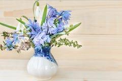 Grupo de flores da mola Snowdrop no fundo branco Fotos de Stock