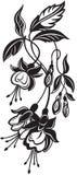Grupo de flores decorativas Fotografia de Stock Royalty Free