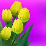 Grupo de flores do tulip na tabela. EPS 8 Foto de Stock Royalty Free